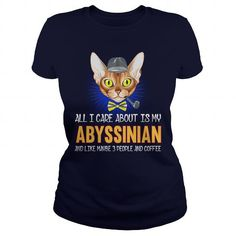 Abyssinian All I Care About Is My Abyssinian Cat All Cat Breeds, Egyptian Mau, Country Shirts, Cat Shirts, Mug Designs, Abyssinian Cat, Pets, Countries, Abyssinian