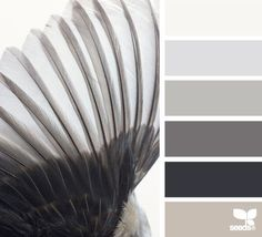 Inspiration for a grey greige taupe colour scheme