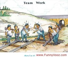 cool Funny Team Work – Funny Photos