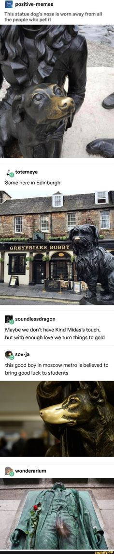 Positive-memes The nose of this statue dog is worn by all people who caress it. The same here in Edinburgh: - iFunny :) - Funny Animals Lol, Haha Funny, Funny Cute, Funny Memes, Funny Stuff, Freaking Hilarious, Dog Memes, Random Stuff, Memes Positivos