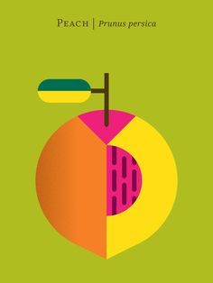 Peach / 12 Fruit And Vegetable Posters For Foodies (via BuzzFeed)