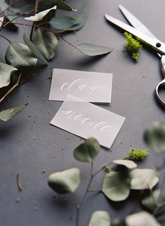 Calligraphy by Cast Calligraphy & Design - vellum paper
