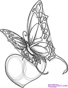 flowers and butterflies with a heart tattoo designs | how to draw a butterfly design step 5