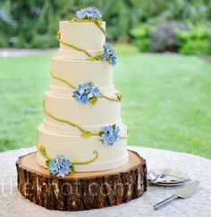 This is a cake that a customer asked me to do.  I love the simplicity of it, and the rustic look of the tree stump stand!