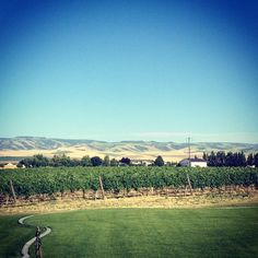 I attended Merlot Camp. Yes, #Merlot Camp. #wawine