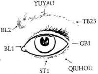 Wonderful article on eye care, including do it yourself acupressure instructions and lifestyle changes to improve eye health and sight. From the perspective of you as an entire human being not a bunch of body parts: Healthy Eyes with Chinese Medicine.