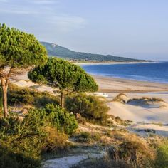 Strandparadies Costa de la Luz   Urlaubsheld.de
