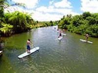 Hawaii Turtle Tours and Eco Adventure #Oahu #Hawaii #Travel