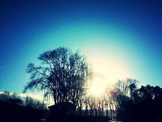 Y por fin salió el sol
