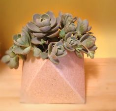 Cereal Box Crafts: Make Your Own Succulent Vase - daily digest