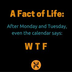 Even the calendar agrees! Fourth Wall, Free Thinker, Go Getter, Freedom Fighters, The Dreamers, Wednesday, Calendar, Facts, Sayings