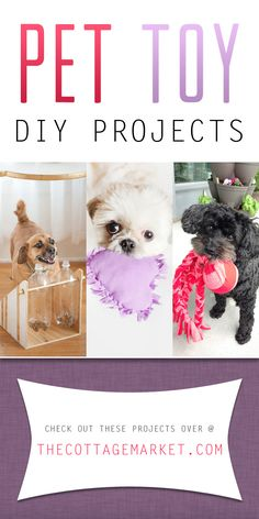 Looking for that PAWFECT gift for your pet? Why not try one of these Pet Toy DIY Projects. Your Dog and Cat will love your creation for sure! Woof Meow!!!