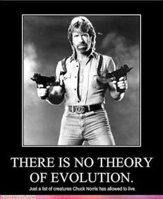 There Is No Theory of Evolutio... is listed (or ranked) 5 on the list The 50 Funniest Chuck Norris Jokes of All Time
