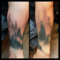 Misty forest. Big mountains to be added up the arm later. ..