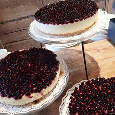 kahvilasigne's photo on Instagram Tiramisu, Ethnic Recipes, Instagram Posts, Food, Essen, Meals, Tiramisu Cake, Yemek, Eten