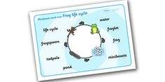 Frog Life Cycle Word Mat - Word mat, Frogspawn, Tadpole, Froglet, Frog, Minibeasts, Topic, Foundation stage, knowledge and understanding of the world, investigation, living things, snail, bee, ladybird, butterfly, spider