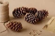 Beautiful garland made with gold leaf and pinecones. Go to website for tutorial.   http://www.thesweetestoccasion.com/2012/12/diy-pine-cone-garland/