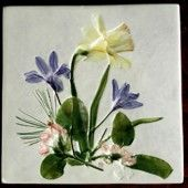 S-T049701-Tile-4in-Daffodil-Scilla-Mayflower