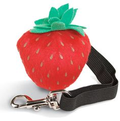 Hid treats in this fun strawberry toy!