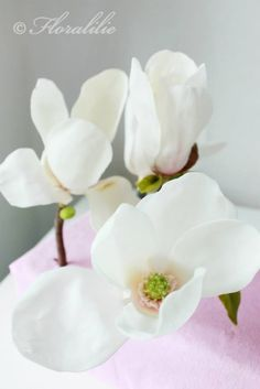 Sugar Magnolias by Floralilie Sugar Art