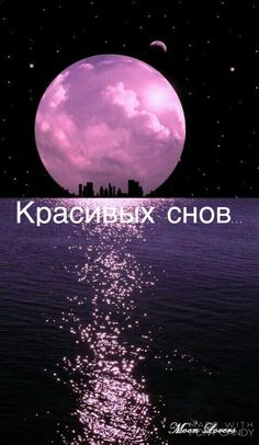Russian Quotes, Good Night, Animals And Pets, Instagram Story, Greeting Cards, Wisdom, Memes, Funny, Movie Posters
