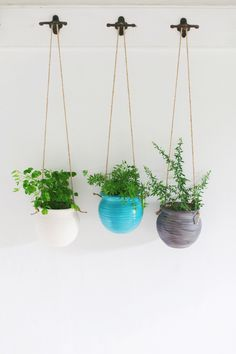 Make any hallway cheery with handmade hanging planters: http://umba.com/products/hanging-pot-planter