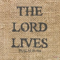 #TRUTH! The LORD lives! Praise be to my Rock! Exalted be God my Savior! Psalm 18:46. Do you believe it?