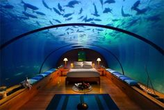 Underwater suite thats part of the Hilton in Maldives Island,their restaurant Ithaa is also underwater
