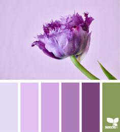 Design Seeds + Color Atlas by Archroma® Design Seeds, Colour Schemes, Color Combos, Flora Design, Deco Boheme, Color Palate, Color Palette Green, Colour Board, Color Stories