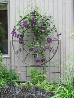A copper trellis plays a trio of roles by holding up a beautiful clematis, covering the side of a house, and satisfying its original purpose as a piece of art.