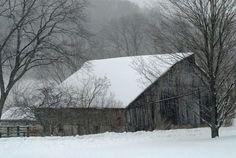 Foggy winter morn in the Ocooch Mountains.