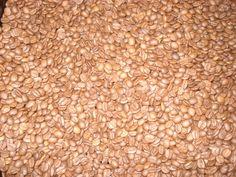 Grãos torrados do Kento Café Gourmet, um produto da agricultura familiar e artesanal.