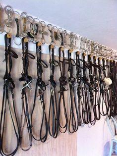 Hang bits above bridals www.thewarmbloodhorse.com