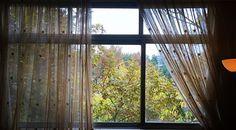 My home window #window#autmn#fall#nature#tehran#darous#daroos#iran#myhomewindow#photo#phtography#photographer#autmn #autumn #autmncolors #fall#mywiew