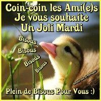 Bon Mardi, Good Morning, Messages, French Language, Tuesday, Facebook, Photos, Days Of Week, Good Morning Wishes