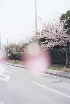 Soft photo by katsumi omori