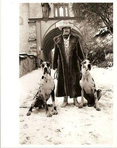 ALAN BATES WITH 2 GREAT DANE DOGS RARE ORIGINAL PHOTO