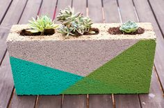 Colorblocked Cinder Block Planter. DIY, garden, gold, home decor, spray paint, how-to, succulents.