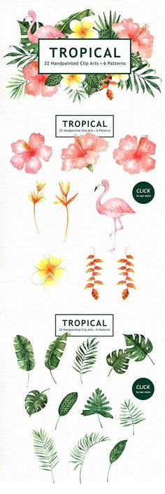 Tropical Leaves Watercolor Clipart by everysunsun - Aquarell - Watercolor Clipart, Watercolor Pattern, Watercolor Flowers, Watercolor Paintings, Painting Flowers, Tattoo Watercolor, Painting Tattoo, Pattern Painting, Watercolor Ideas