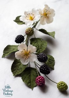 Easy tutorial for creating gum paste blackberries, leaves and blossoms perfect for decorating cakes and for sugar art arrangements. Fondant Flowers, Paper Flowers, Fondant Bow, Fondant Tutorial, Fondant Cakes, Blackberry Tattoo, Sugar Paste Flowers, Vintage Baking, Sugar Art