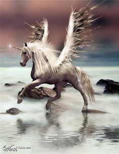 XOO Photo :: Fantasy Unicorn with Wings - Magical winged unicorn in the mist.