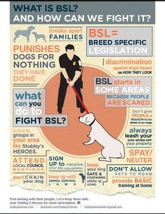 Good friend to Stubby's Heroes Michelle Mathews Vogel made this great anti BSL…