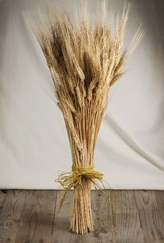 "Natural Dried Wheat Stalks 12 oz. bundle $7.99 (27"" tall)"
