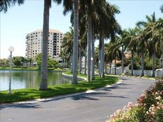 Petersburg Apartment starting at a night, Sleeps Book Don't Get TIDE Down~Make WAVES on Isla del Sol! in Florida now! Holiday Apartments, Rental Apartments, St Petersburg Fl, Holiday Lettings, Vacation Home Rentals, Rental Property, Compass, Travel Photography, Sidewalk