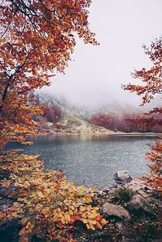 Lake during fall via @freepeople #ourskinnyfall #landscape #autumn