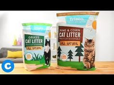 Best Cat Food For Indoor Cats | Pet Guide Canned Cat Food, Dry Cat Food, Senior Cat Food, Cat Food Brands, Cat Diet, Best Cat Food, Indoor Pets, Pet Chickens, Chicken Flavors