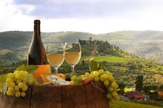 Picture of White wine with barrel on vineyard in Chianti, Tuscany, Italy stock photo, images and stock photography. Tuscan Recipes, Italian Recipes, Tuscany Food, Tuscany Italy, Toscana Italia, Italy Honeymoon, Honeymoon Destinations, Italian Wine, White Wine