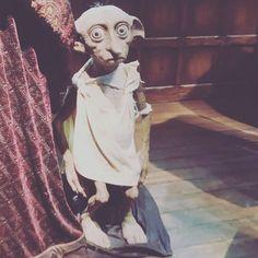Hogwarts, Museum, Princess Zelda, Fictional Characters, Sorting Hat, Potsdam, Figurine, Fantasy Characters, Museums