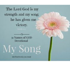 FREE Online Devotional Bible Study with FREE 32-page Workbook and Live Support Group. Study God's Word in a beautiful new way. For details visit www.she31network.com/study Jesus is my strength and my song. He puts a new song in our hearts. We sing a new song to Him to give thanks for every new day.