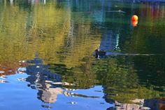 Central Park, foto de A.Koch